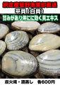 虎や・虎いち共通 白貝